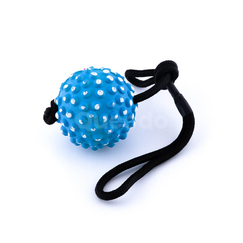 Zábavná psia hračka lano lopta pichliače modrá