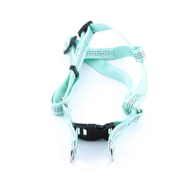 Kvalitné popruhy pre psa imitácia nylonu tyrkysové