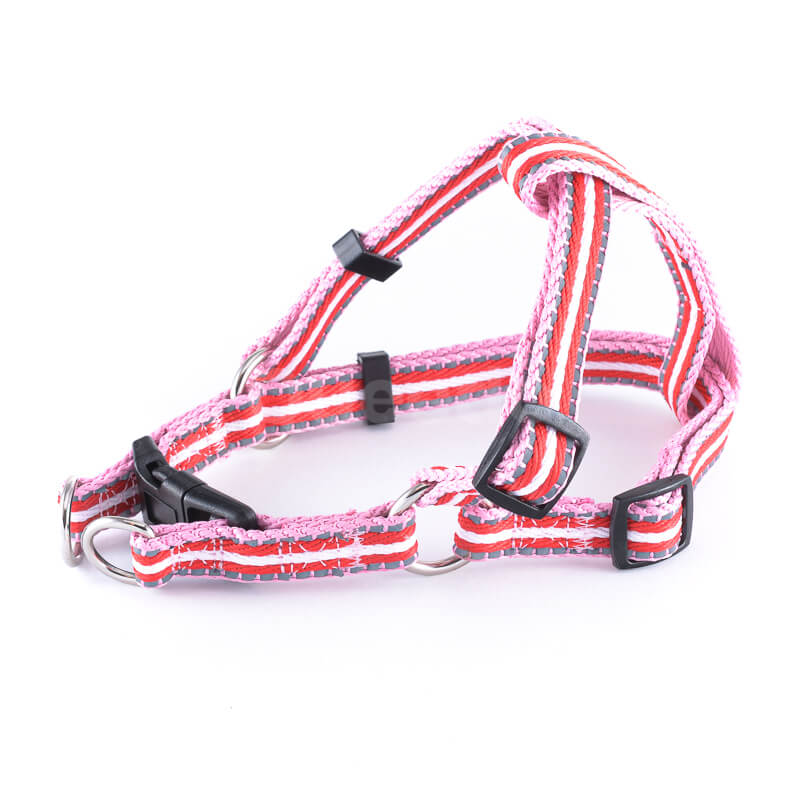 Postroj pre mačku pásik reflex ružovo-červený Queedo
